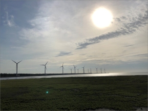 The Gaomei Wetland Habitat and the adjacent wind farm.